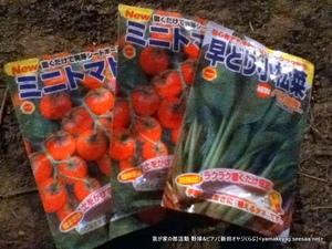 倭と種植^^